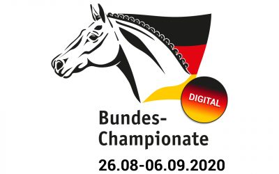 Bundeschampionate 2020 digital: Im Internet live dabei